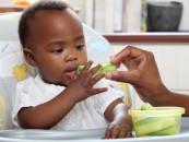 Food for Paediatric Diabetes