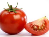 Nigeria's annual tomato import bill now N16bn — Per Sec