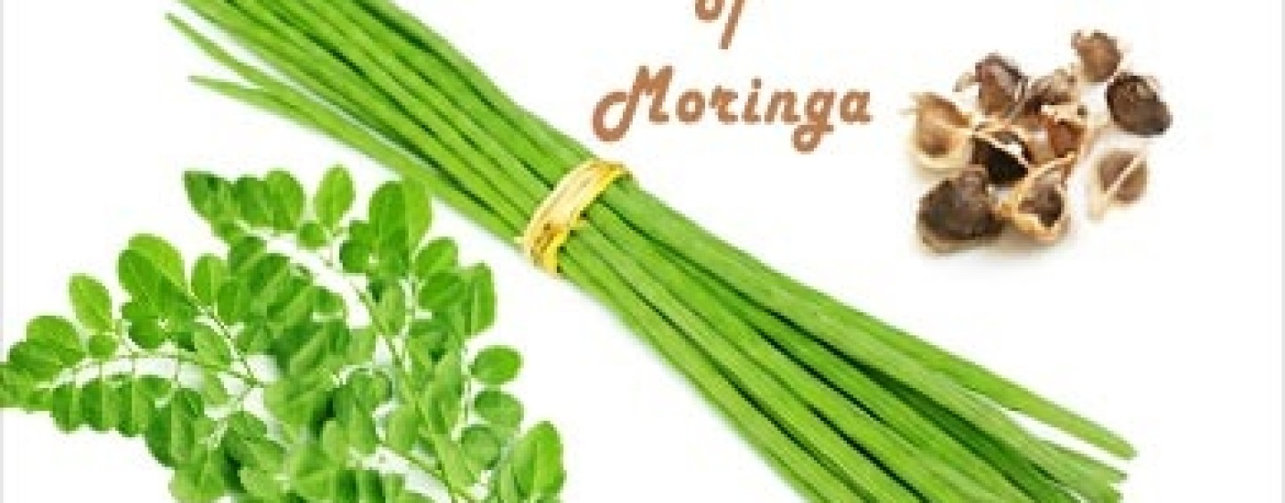 Health benefits of Moringa the miracle tree