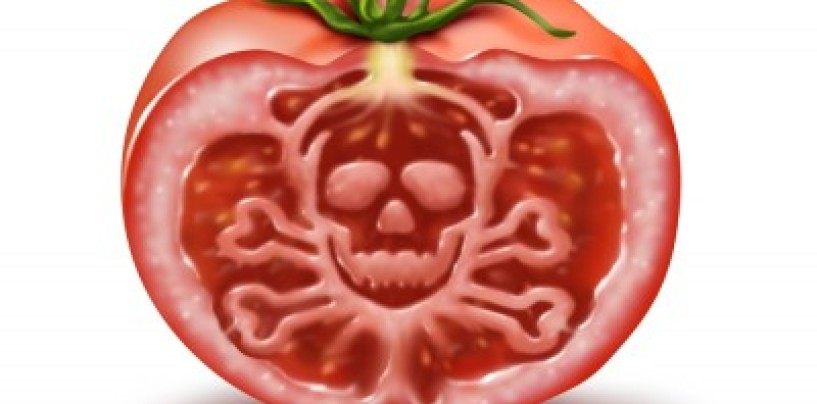 Food Poisoning: Common foods to watch out for