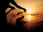 Fishermen applaud CBN on forex restriction