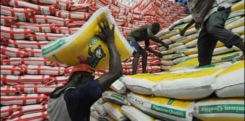 Rice imports drop by 53% as prices rise