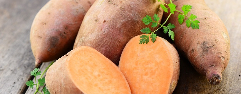 Sweet potato: Stakeholders to discuss profitable investments