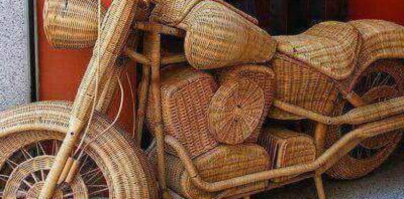Raffia: Creativity using the Raffia palm