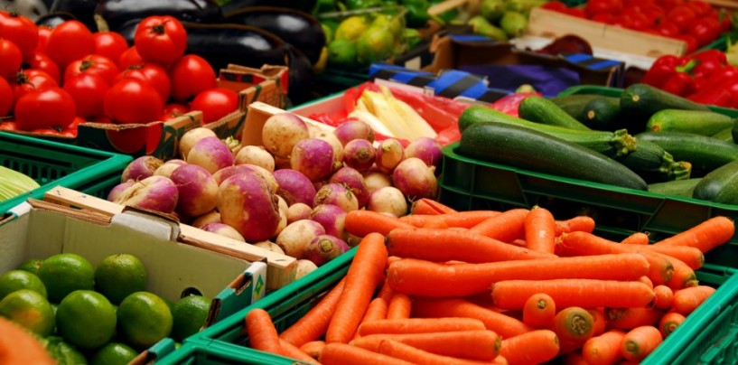 FG, Netherlands collaborate to boost food production