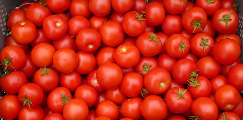 Increase in the price of tomatoes