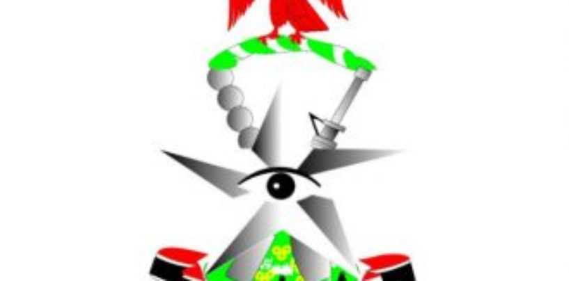 Customs Fou Zone C' Owerri Destroys Imported Poultry Products