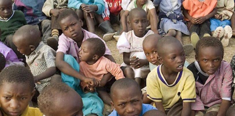 Amidst Food Surplus, Millions of Children Still Malnourished