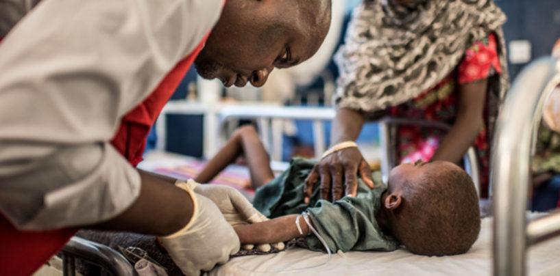 Famine Looms in North-East Nigeria As Food Crisis Worsens